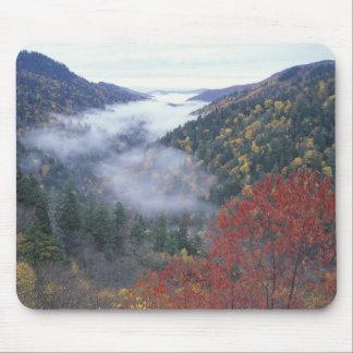 Los E.E.U.U., Tennessee, grandes montañas de Smoke Tapete De Ratón