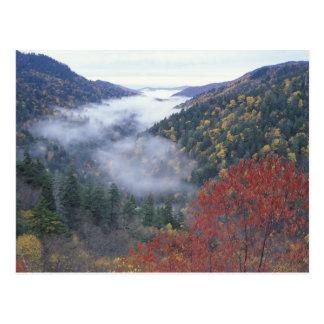 Los E.E.U.U., Tennessee, grandes montañas de Postal