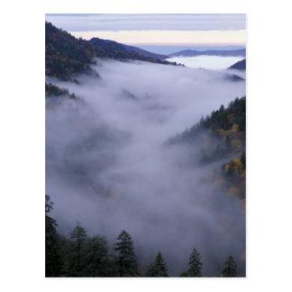 Los E.E.U.U., Tennessee. Grandes montañas de Tarjetas Postales