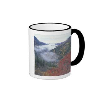 Los E.E.U.U., Tennessee, grandes montañas de Taza De Dos Colores