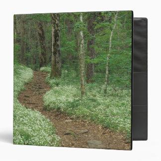 "Los E.E.U.U., Tennessee, Great Smoky Mountains NP, Carpeta 1 1/2"""