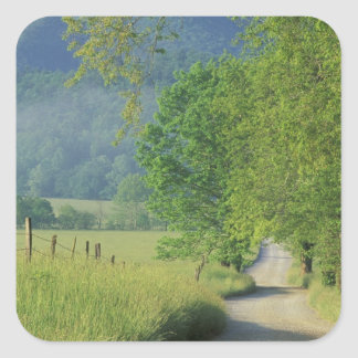 Los E.E.U.U., Tennessee, Great Smoky Mountains NP, Pegatina Cuadrada