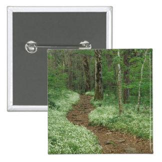 Los E.E.U.U., Tennessee, Great Smoky Mountains NP, Pin Cuadrado