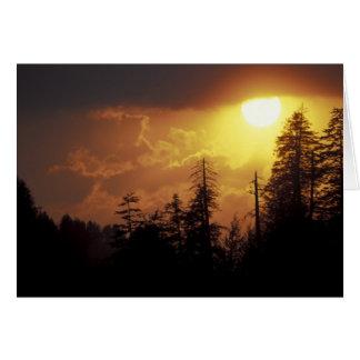 Los E.E.U.U., Tennessee, Great Smoky Mountains NP. Tarjeta De Felicitación
