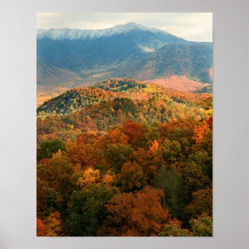 Los E.E.U.U., Tennessee. Vista del soporte Leconte Impresiones