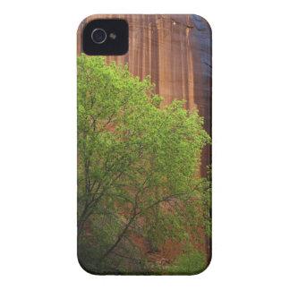 Los E.E.U.U., Utah, acantilados del bermellón del Carcasa Para iPhone 4