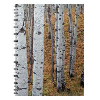Los E.E.U.U., Utah, bosque del Estado 2 del Libro De Apuntes Con Espiral