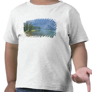 Los E.E.U.U., Utah, bosque del Estado de Ashley, Camisetas