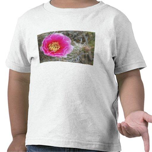 Los E.E.U.U., Utah, Canyonlands NP, higo chumbo de Camisetas
