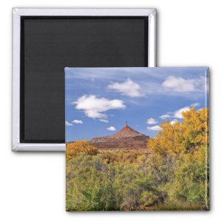Los E.E.U.U., Utah, cerca del parque nacional de C Iman Para Frigorífico