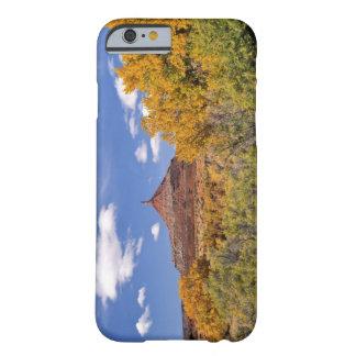 Los E.E.U.U., Utah, cerca del parque nacional de Funda De iPhone 6 Barely There