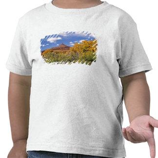 Los E.E.U.U., Utah, cerca del parque nacional de Camisetas