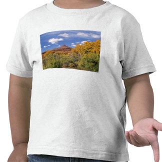 Los E.E.U.U., Utah, cerca del parque nacional de Camiseta