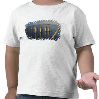 Los E.E.U.U., Utah, gran lavabo, Saltair, gran sal Camisetas