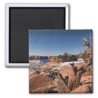 Los E.E.U.U., Utah, Moab. Parque nacional de Canyo Imán De Frigorifico