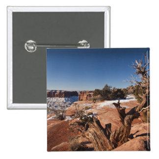 Los E.E.U.U., Utah, Moab. Parque nacional de Canyo Pin Cuadrado
