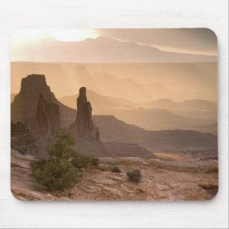 LOS E.E.U.U.; Utah; Parque nacional de Canyonlands Tapete De Ratón