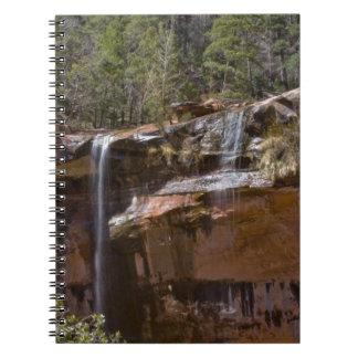 Los E.E.U.U., Utah, parque nacional de Zion, agua  Spiral Notebooks