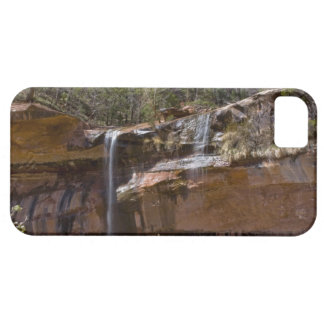 Los E.E.U.U., Utah, parque nacional de Zion, agua  iPhone 5 Cárcasa