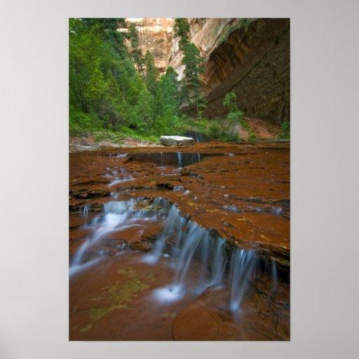 Los E.E.U.U., Utah, parque nacional de Zion. Escén Poster