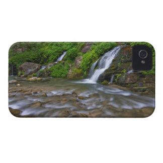Los E.E.U.U., Utah, parque nacional de Zion.  Prim iPhone 4 Fundas
