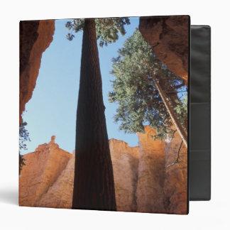 """Los E.E.U.U., Utah, parque nacional del barranco Carpeta 1 1/2"""""""