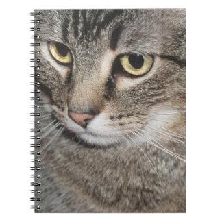 Los E.E.U.U., Utah, primer del gato nacional Libros De Apuntes Con Espiral