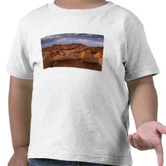 LOS E.E.U.U.; Utah. Vista del parque de estado del Camiseta