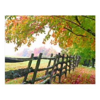 Los E.E.U.U., Vermont. Cerca debajo del follaje de Tarjetas Postales
