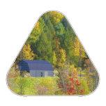 Los E.E.U.U., Vermont. Foilage de la caída a lo la