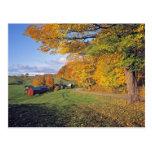 Los E.E.U.U., Vermont, granja de Jenne. La caída Tarjeta Postal