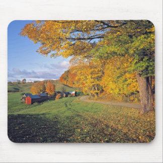 Los E.E.U.U., Vermont, granja de Jenne. La caída v Alfombrillas De Ratón