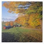 Los E.E.U.U., Vermont, granja de Jenne. La caída v Azulejo Cerámica