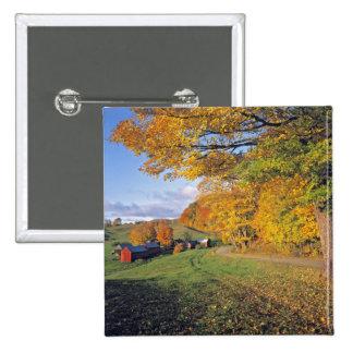 Los E.E.U.U., Vermont, granja de Jenne. La caída v Pin