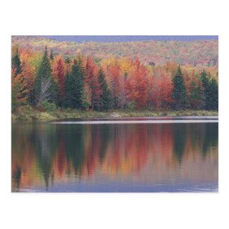 Los E.E.U.U., Vermont, lago McAllister, cerca de l Postal