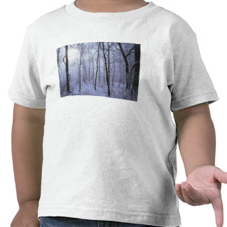 Los E.E.U.U., Virginia, área de la fauna de Camiseta