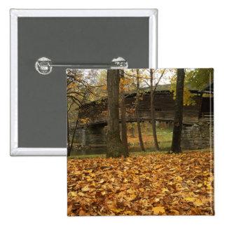 Los E.E.U.U., Virginia, Covington, Humpback cubier Pin