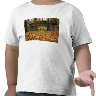 Los E.E.U.U., Virginia, Covington, Humpback Camiseta