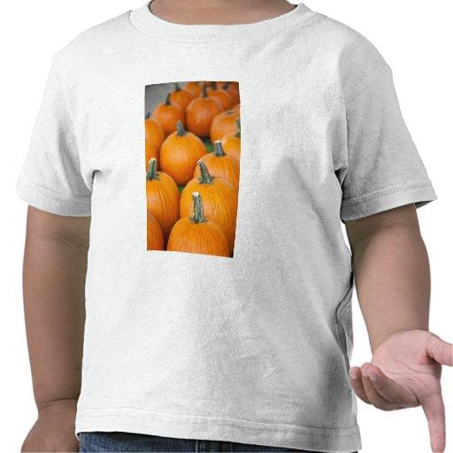 Los E.E.U.U., Virginia Occidental, Charleston. Cap Camisetas