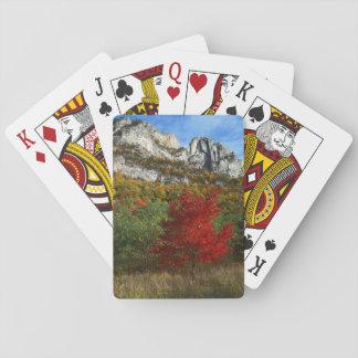 Los E.E.U.U., Virginia Occidental, rocas Spruce Cartas De Póquer