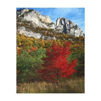 Los E.E.U.U., Virginia Occidental, rocas Spruce Impresión En Lona