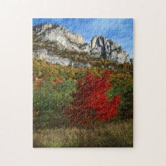 Los E.E.U.U., Virginia Occidental, rocas Spruce Puzzle Con Fotos