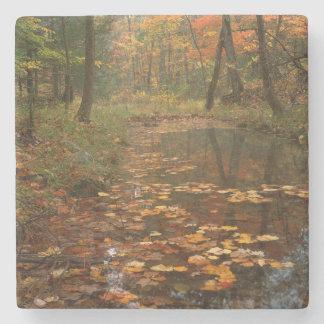 Los E.E.U.U., Virginia, otoño en parque de estado Posavasos De Piedra