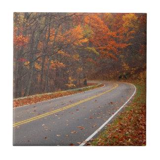 Los E.E.U.U., Virginia, parque nacional de Tejas Cerámicas