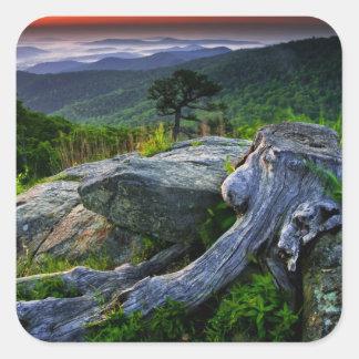 Los E.E.U.U., Virginia, parque nacional de Calcomanías Cuadradass