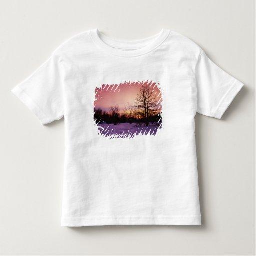 Los E.E.U.U., Virginia, parque nacional de Camiseta