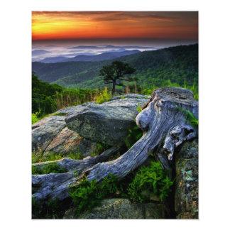 Los E.E.U.U., Virginia, parque nacional de Shenand Fotografías