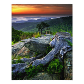 Los E.E.U.U., Virginia, parque nacional de Shenand Impresión Fotográfica