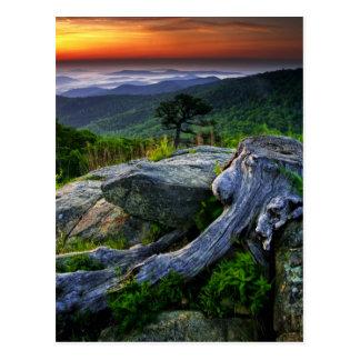 Los E.E.U.U., Virginia, parque nacional de Shenand Tarjeta Postal