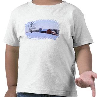 Los E.E.U.U., Virginia, Shenandoah Valley, granero Camisetas